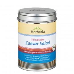 Caesar Salad, Salladskrydda EKO