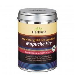 Mapuche fire