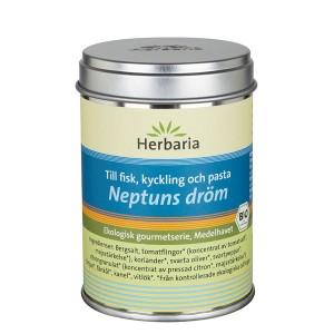 Neptuns dröm