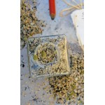Algaemashio