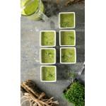 Greenylicious soup